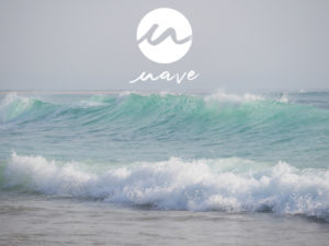Read more about the article Wave